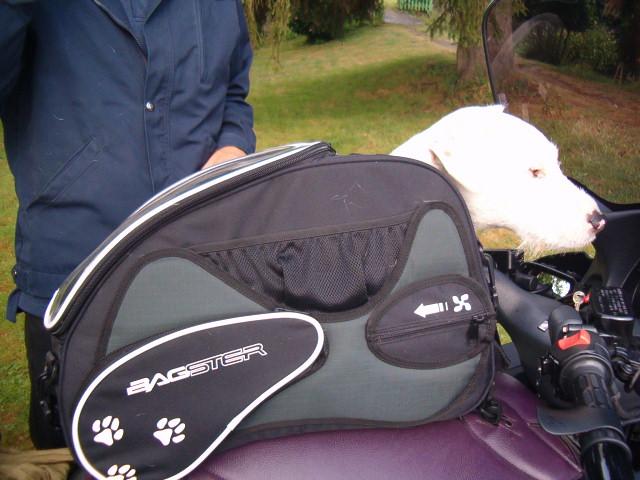 accessoires nouveau sac bagster pour chien argos. Black Bedroom Furniture Sets. Home Design Ideas