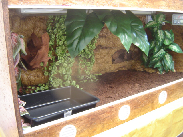 construction d 39 un terrarium pour boa constrictor imperator. Black Bedroom Furniture Sets. Home Design Ideas
