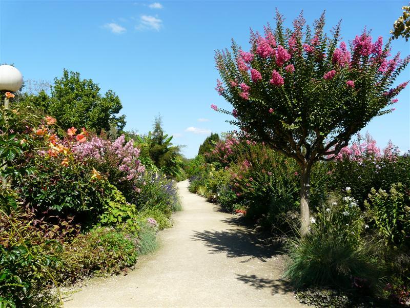 Le jardin fleuri for Organiser un jardin fleuri