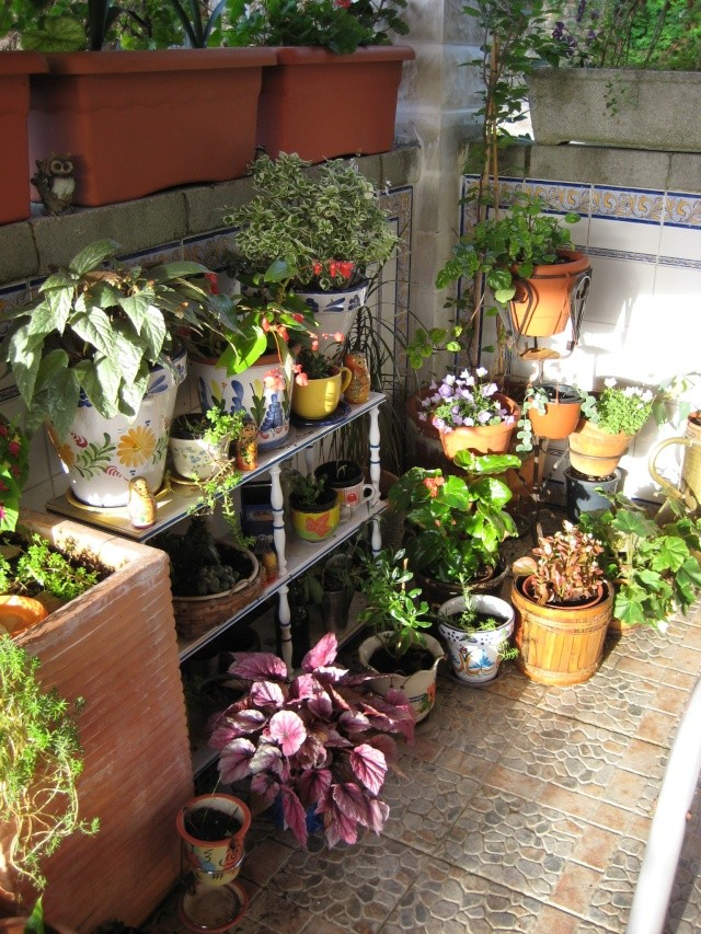 La casina patio y jardin trana for Manualidades de jardineria