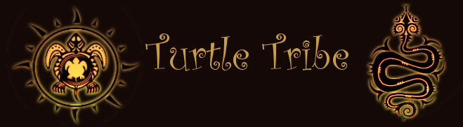 TurtleTribe